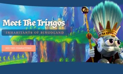 eQube presents The Tringos