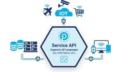 Push Technology Launches Service API