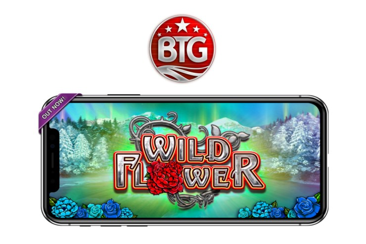BIG TIME GAMING'S WILD FLOWER DEBUTS EXCLUSIVELY VIA OGS ON FLUTTER GROUP BRANDS