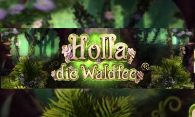 HÖLLE GAMES RELEASE 'HOLLA DIE WALDFEE®'!