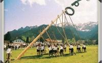 Austria - Maibaum