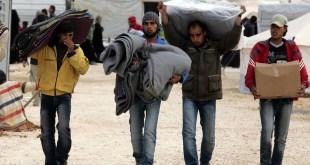 migranti, azyl