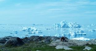 klima, globalne oteplovanie