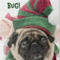 Cute Pug Christmas Puzzle