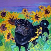 Painting art Black pug sunflowers