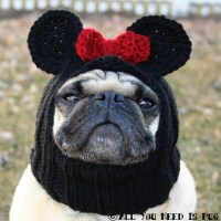 Dog Hat - Miss Mouse Hat