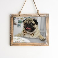 Happy Pug Wall Art