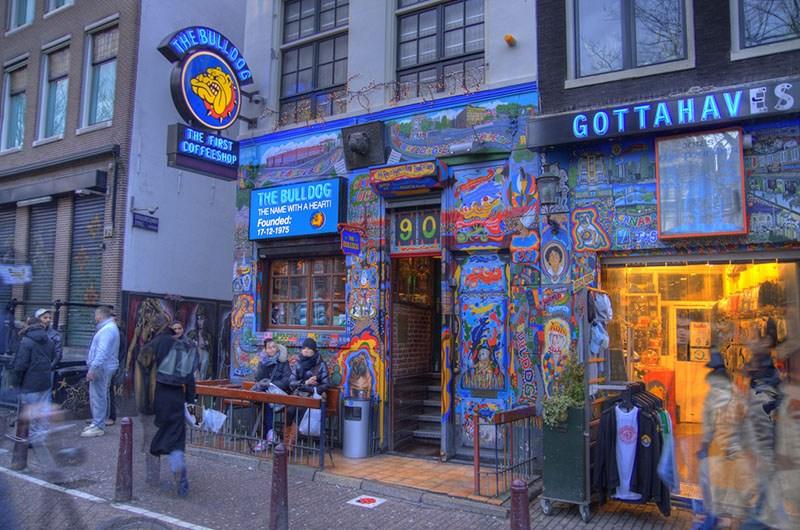Coffeeshop Bulldog in Amsterdam