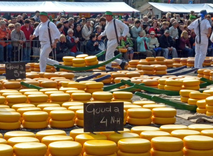 Pictoresque Alkmaar cheese market