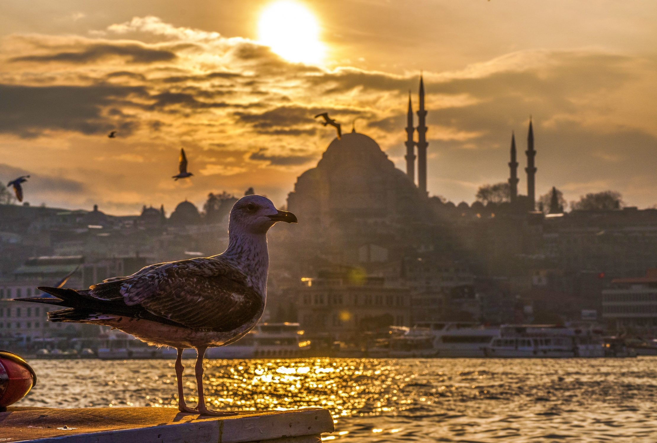 10 top reasons to visit Istanbul