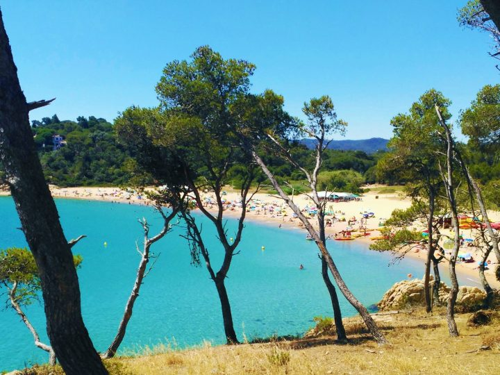 Splendid natural Platja de Castell, one of the best beaches in Costa Brava, Spain