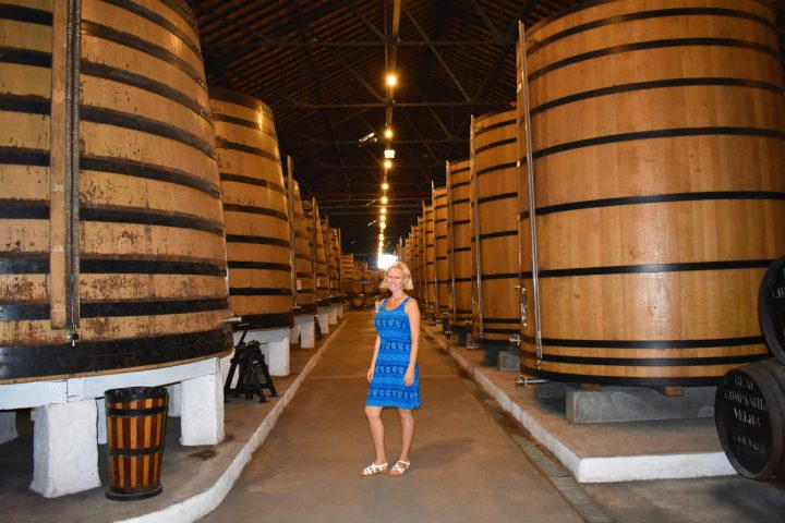 The best wine cellars in Porto and Gaia, Portugal