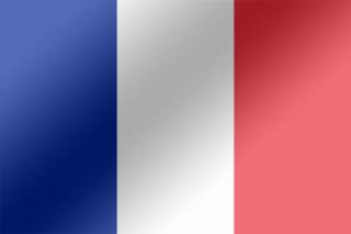 La France et ses sélections télévisées : 2007
