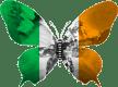 Irlande-papillon