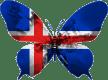 Islande-papillon