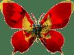 Montenegro-papillon