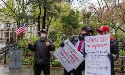 protestors - zenger