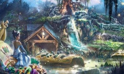 princess and the frog, disney-splash mountain
