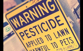 Scale of suicides by pesticide poisoning revealed by new study