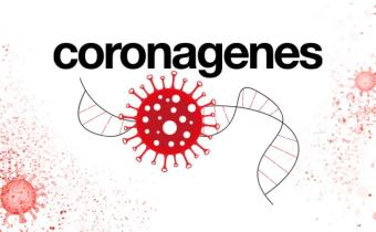 Coronagenes: A study of the genes behind severe COVID-19