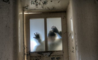 Zombie neuroscience: it's all about the braiiiiins