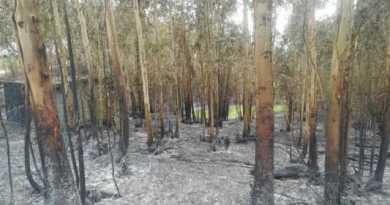 Extinguido el incendio que ayer asoló Muskiz,