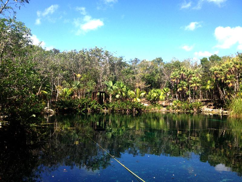cenote-peninsula-de-yucatan-mexico-eusouatoa