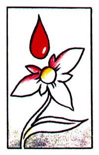 Doação de Sangue 68