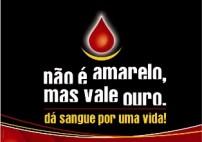Doação de Sangue 35