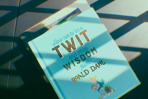How Not to be a twit Roald Dahl Review