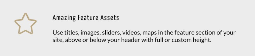 Amazing Feature Assets