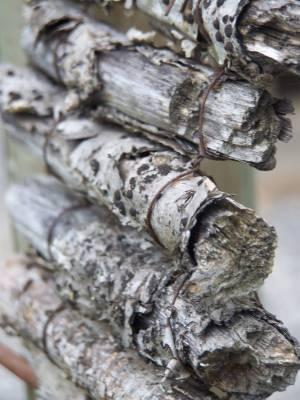 Holzobjekt_Schweiz