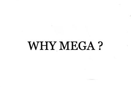 なぜメガトリートメント?