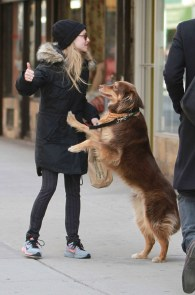 Amanda-Seyfried_-Out-in-NYC--23-662x1003