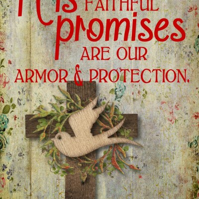 Daily Prayer – Protection with His Faithful Promises