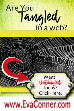 Are you tangled in a web?