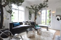 san-francisco-living-room-with-towering-trees