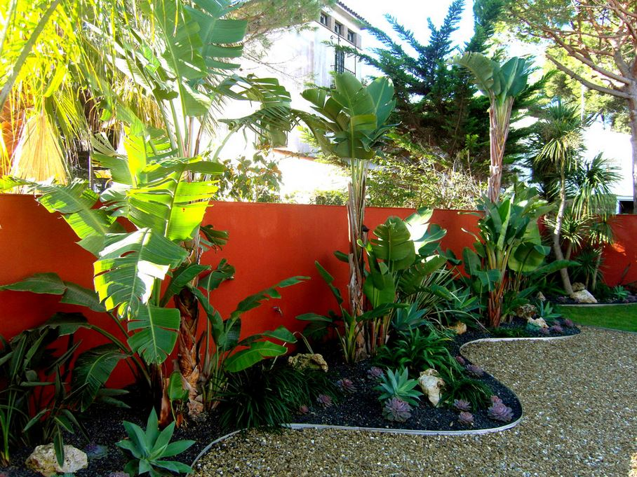 vibrant-red-orange-accent-wall-in-a-tropical-yard