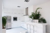 white-kitchen-with-eye-catching-indoor-plants