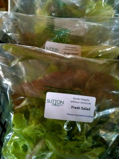 Packing mixed salad leaves at SCF