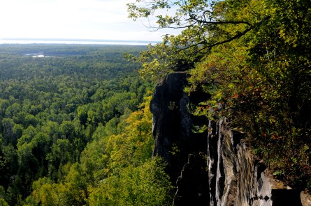 Cup and Saucer trail