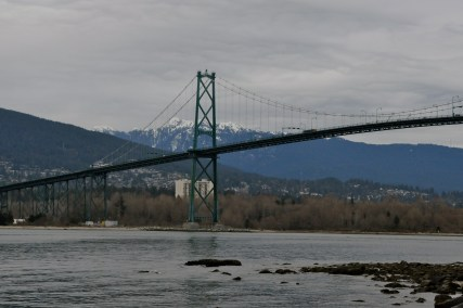 View from the Stanley Park