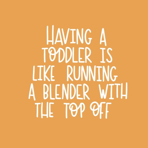 Having a toddler quote