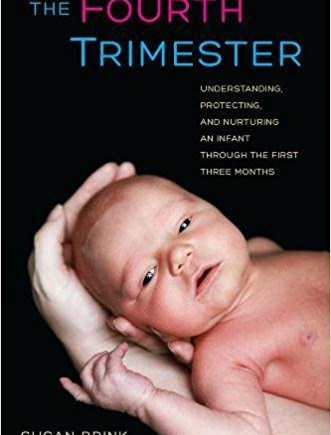 The Fourth Trimester by Susan Brink