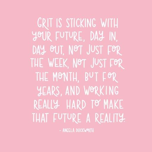Grit is sticking with your future day in and day out quote