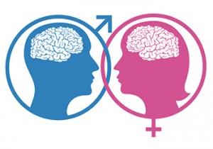cervello maschile femminile