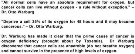 Warburgs hypotes
