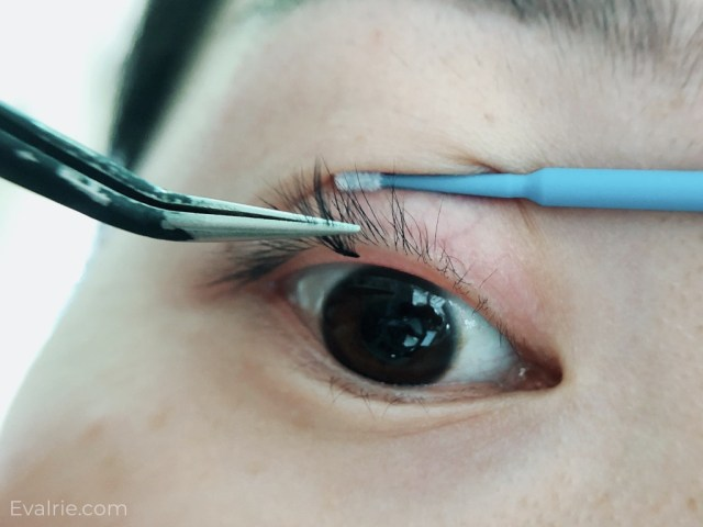How I Diy My Own Lash Extensions From Home The Miening Of Eva