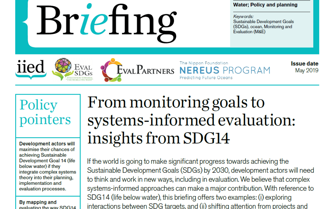 Briefing Paper 11 – From monitoring goals to systems-informed evaluation: insights from SDG14