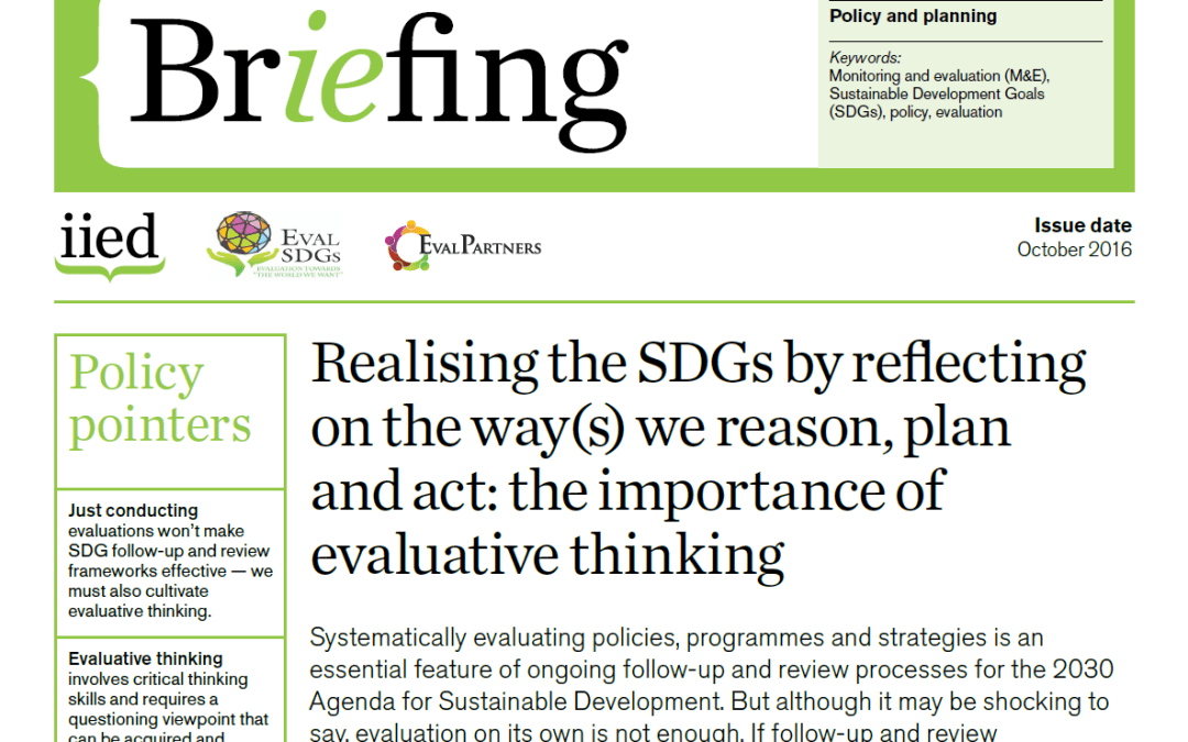 Briefing Paper 4 – Realising the SDGs by reflecting on the way(s) we reason, plan and act: the importance of evaluative thinking
